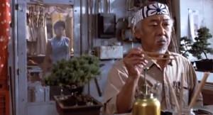 Mr Miyagi Bonsai