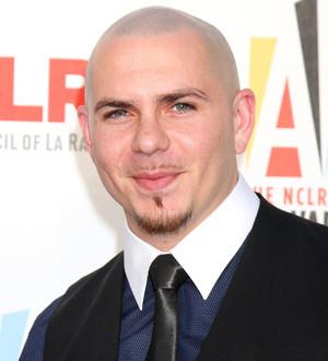 Pitbull the singer/rapper: