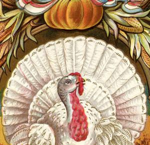Vintage Thanksgiving Clip