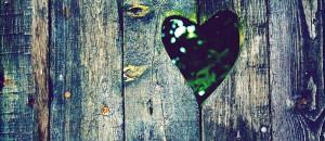 Heart shape fences Facebook cover