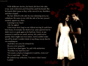 Twilight Series twilight