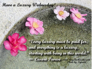 ... Good Morning Wednesday, Wednesday Morning Messages, Wishes, Quotes