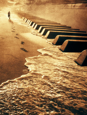 beautiful, music, ocean