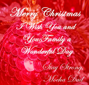 20 Merry Christmas Quotes 2014