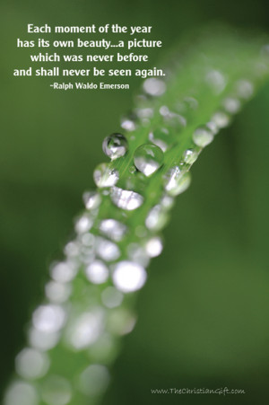 christian quotes and sayings about nature