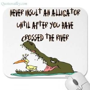 Never Insult An Alligator