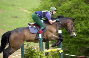 Horse Show Jumping Quotes Sports - show jumping