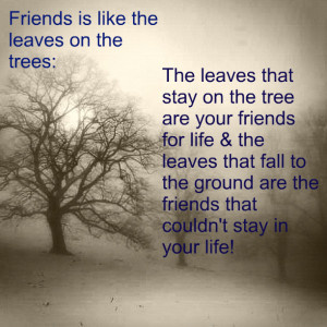 friends_are_like_the_leaves_on_the_trees-810.jpg?i