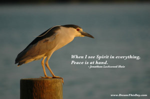 hand quotes and sayings quotes about hand by jonathan lockwood huie