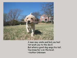 Dogs and People – Photos and Quotes for Dog Lovers, Part 2