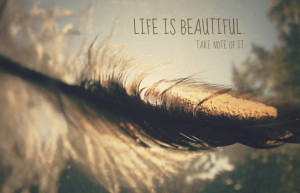 Quotes Life Is Beautiful Biography