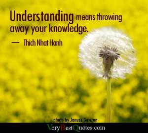 Understanding means throwing away your knowledge.
