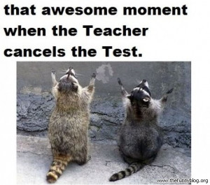 funny school, that awesome moment when the teacher cancels the test