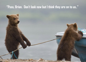 Funny Picture: Cute bears stealing a boat.