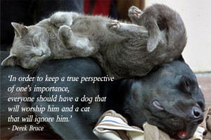 In Order To Keep A True Perspective Of One's Importance, Everyone ...
