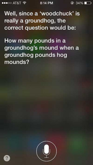 Why Siri Is Your Best Companion in the Days of Boredom (24 pics)