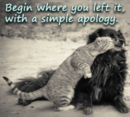 Ways to Reconcile With Your Best Friend