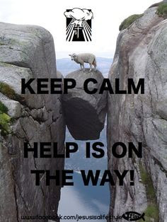 Keep Calm=JESUS Helps The Lost Sheep! More