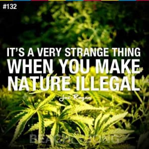 Funny weed quotes . Funny weed saying