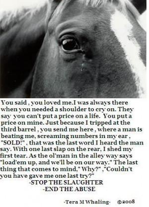 stop animal cruelty quotes