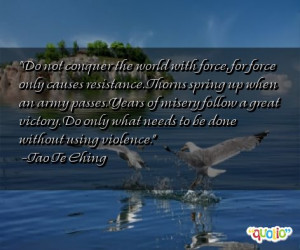 Do not conquer the world with force,