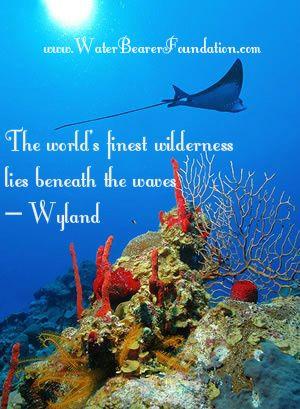 ... .com/ beach quotes diving quotes ocean quotes diving