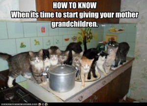 funny-pictures-how-to-know-