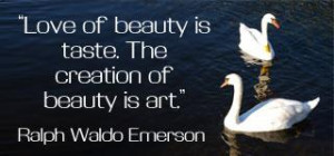 Beauty Is Pain Quotes