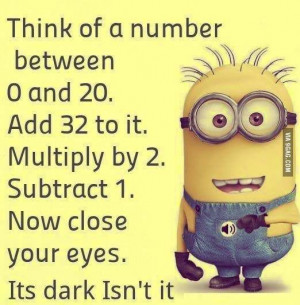 Minions Quotes - This is my kind of math problem and my answer is