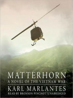 Sydney Young's Reviews > Matterhorn: A Novel of the Vietnam War