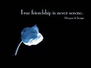 Friendship Quotes Friendship Quote