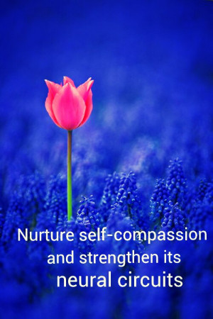 nurture_self-compassion-460188.jpg?i