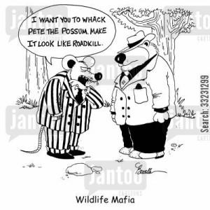 Whacked Cartoon Humor