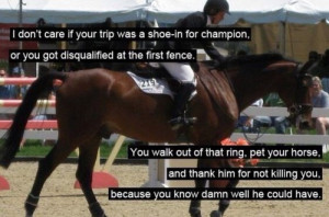 Horse Jumping Quotes and Sayings