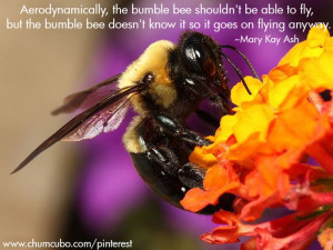 , the bumble bee shouldn't be able to fly, but the bumble ...
