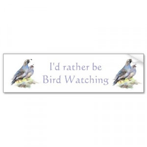 Rather be Bird Watching