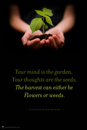 Your mind is the garden. Your thoughts are the seeds. The harvest can ...