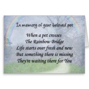 Pet loss sympathy card - pet waits for you