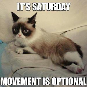 Best Grumpy Cat Quotes