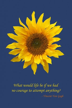 Inspirational Quotes About Sunflowers. QuotesGram