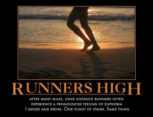 runners high after many miles long distance runners often