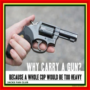 Guns and Gun Control 101 For Dummies (41 pics for easy understanding)