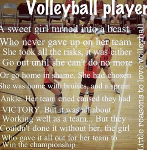 May The Best Volleyball Player