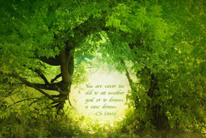 ... too old to set another goal or to dream a new dream. – C.S. Lewis