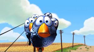 Cool Birds HD Wallpaper
