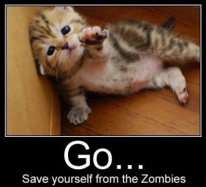 No kitty I can't leave you behind to be devoured by the zombies you ...