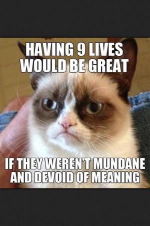 Tard The Grumpy Cat Quotes...