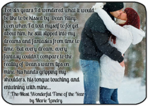 The Most Wonderful Time of the Year by Marie Landry Release Date: 11 ...
