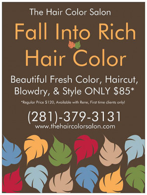 The Hair Color Salon Your