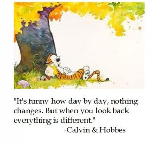 What are the most profound quotes from the Calvin and Hobbes series?